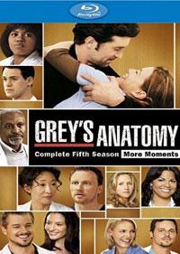 實習醫生格蕾第五季