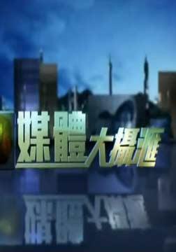 媒體大攝匯2015(綜藝)