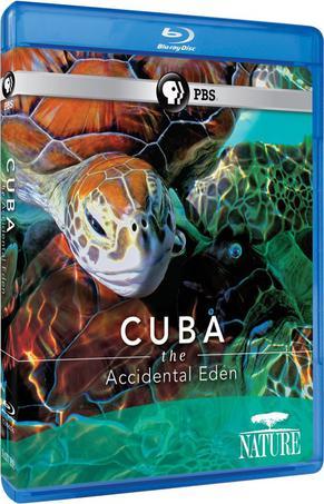 古巴:意外的伊甸園