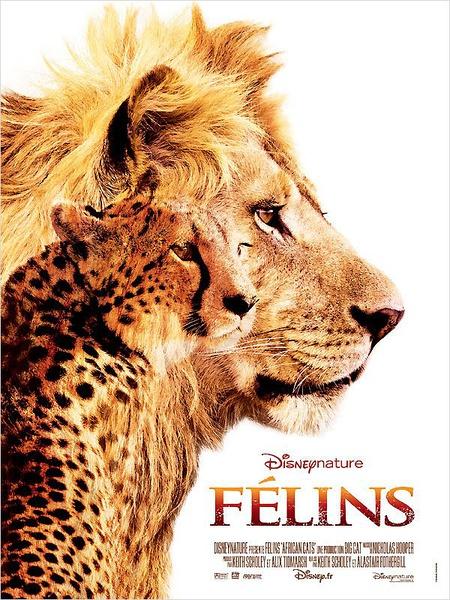 非洲貓科:勇氣國度