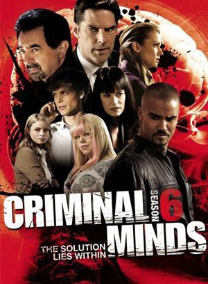 犯罪心理第六季(歐美劇)