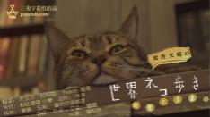 岩合光昭の貓步走世界~新奧爾良篇