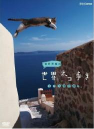 岩合光昭の貓步走世界~馬德裏篇