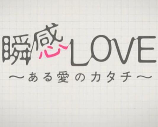 瞬感LOVE ~某種愛的形式