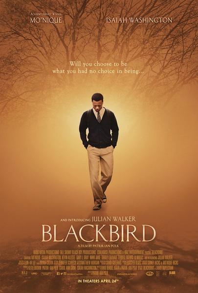黑鳥(愛情片)