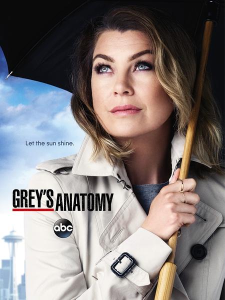 實習醫生格蕾第十二季