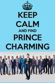 尋找白馬王子第一季