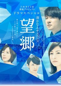 望鄉(劇情片)
