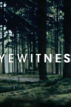 目擊者/目擊證人第一季