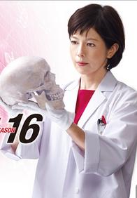 科搜研之女第十六季