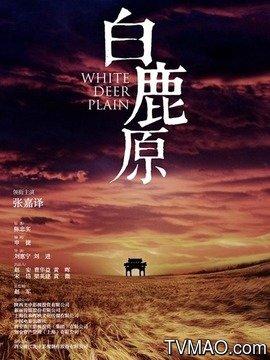 白鹿原電視劇版(內地劇)