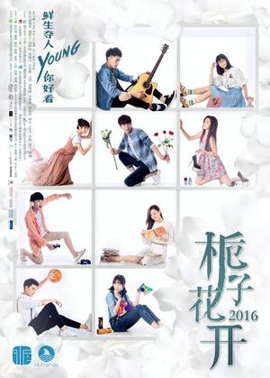 梔子花開2017(內地劇)