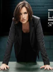 法律與秩序:特殊受害者第十九季(歐美劇)