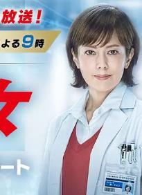 科搜研之女第十七季