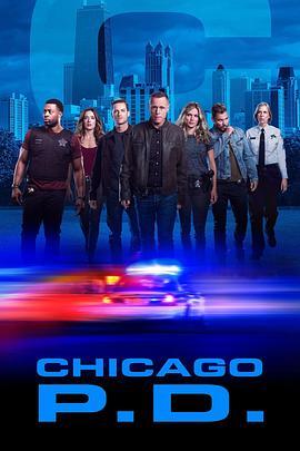 芝加哥警署第七季的海報圖片