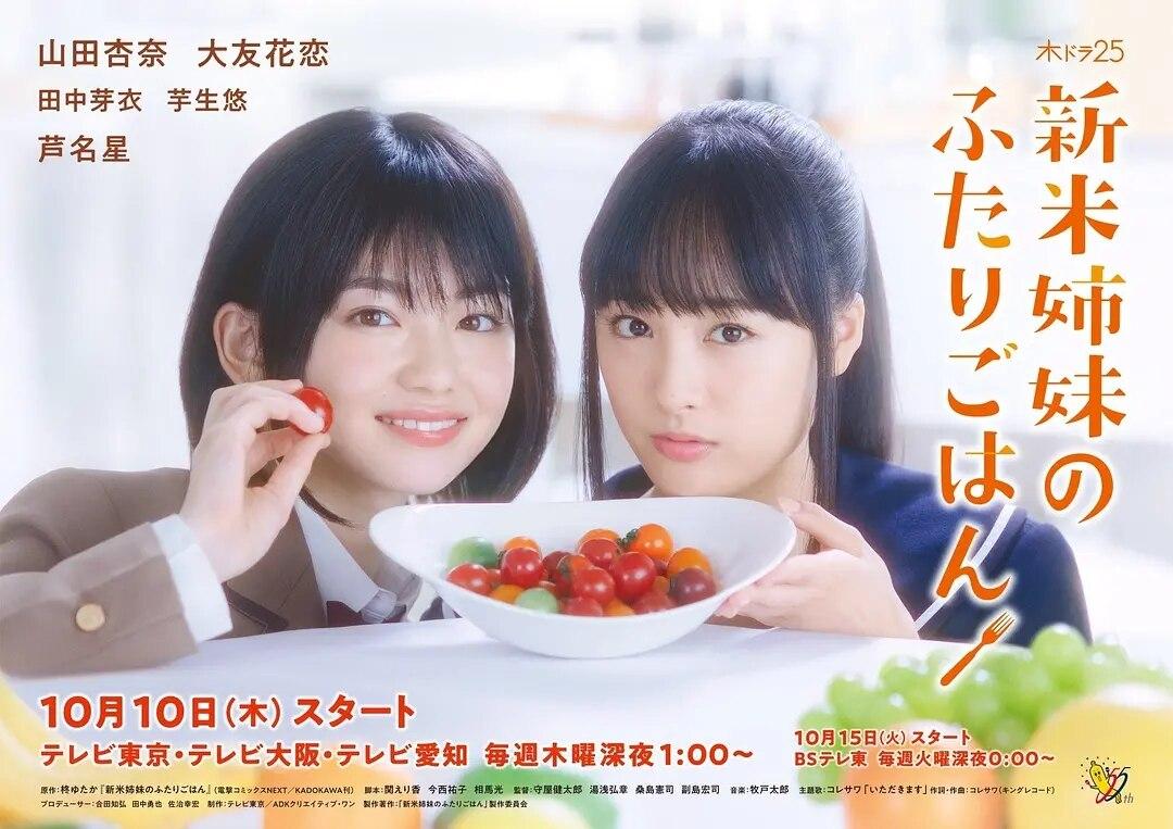 新手姐妹的雙人餐桌的海報圖片